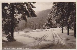 RP; Kleiner Arbersee im Winter, Bayr, Wald, Germany, 10-20s
