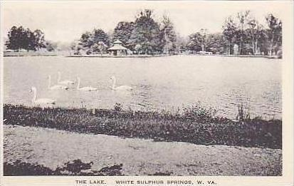 West Virginia White Sulphur Springs The Lake Albertype