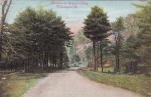 WILLIAMSPORT , Pennsylvania, 1909 ; Entrance to Mosquito Valley