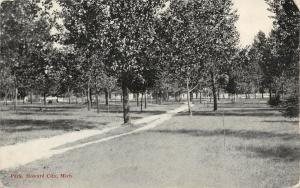 Howard City Michigan~Path Through Park~Young Trees~Buildings~1910 B&W Postcard