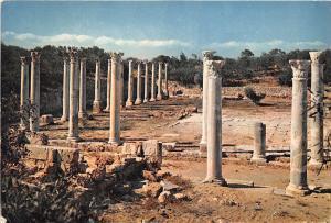 BR21328 Ruins of Salamis Cyprus