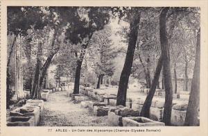 France Arles Un Coin des Alyscamps