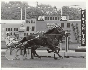 ROOSEVELT Track Harness Horse Race , GOVERNORS SKIPPER wins ,1984