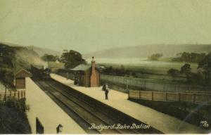 Rudyard Lake Railway Station Staffordshire England UK Vintage Postcard D23