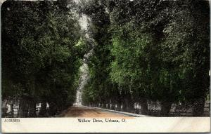 Urbana Ohio~Willow Drive~Dirt Road Through Trees~1907 ZIM Postcard