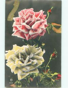 tinted rppc c1910 BEAUTIFUL FLOWERS AC9299