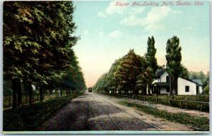 Deshler, Ohio Postcard KEYSER AVENUE North Residential Scene c1910s Unused