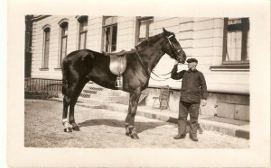 Man with his horse Old vintage antique French postcard