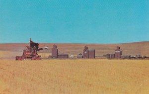 Harvest Time , Saskatchewan , Canada , 1950-60s