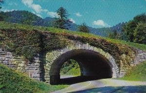 Tennessee Smoky Mountain The Loop Underpass