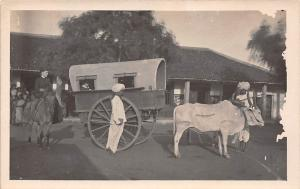 India Bullock Bandy, Oxen Carriage Coach