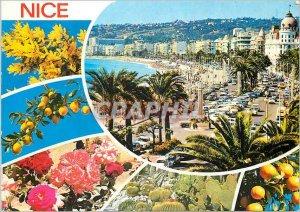 Nice Modern Postcard COte d'Azur French Riviera Promenade des Anglais