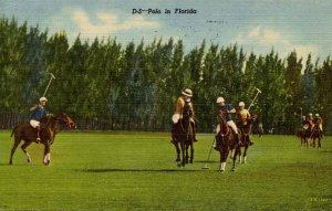 Polo in Florida