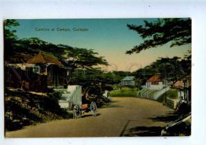 203062 Netherlands Antilles Curacao Camino al Campo Vintage