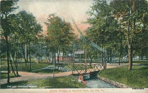 1907 Oil City Pennsylvania Rustic Bridges Monarch Park American postcard 9113