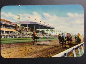USA: MIAMI FLORIDA Horse Racing, Winter Racing at Tropical Park CORAL GABLES