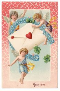 Valentine Postcard Cherub Cupid Forget Me Nots Horseshoe Embossed Vintage c 1910