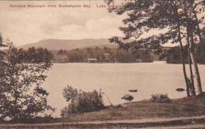 Maine Lake Sunapee Sunapee Mount From Bukehaven Bay Albertype