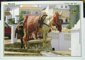 Spain Mijas Burro Taxi - posted