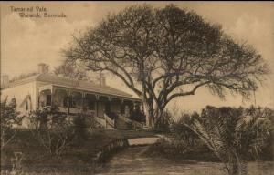 Warwick Bermuda Tamarind Vale c1910 Postcard