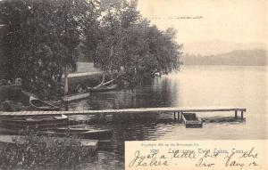 Twin Lakes Connecticut Lake Scene Waterfront Antique Postcard K56673
