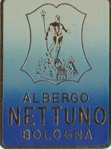 Italy Bologna Albergo Nettuna Vintage Luggage Label sk2231
