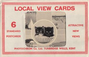 Colwyn Bay Kittens Yachting Pond Boats PACK OF SIX Old Postcard s