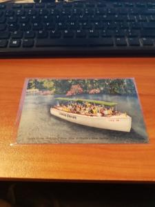 Antique/Vintage Florida Postcard, Feeding the Fish at Silver Springs