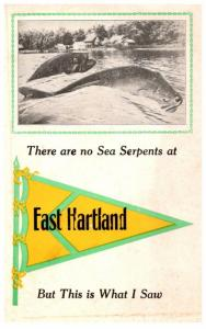 Connecticut  East Hartford ,  There are no Sea Serpents