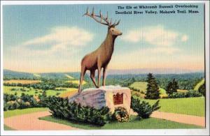 The Elk, Deerfield River Valley, Mohawk Trail MA