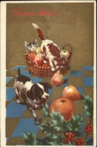 French New Year ART DECO Puppy Dog Kittens & Fruit c1915 Postcard
