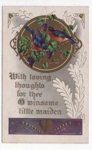 Vintage Valentine's Day Greeting Post Card, Pair of Robins, Grapes, Message