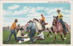 Nebraska Branding Scene In Western Nebaska Curteich