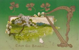 Saint Patrick's Day With Gold Harp