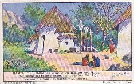 Liebig Vintage Trade Card S1390 Typical Dwellings of the Pacific Islands No 1...