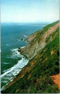 Del Norte Coast Redwoods State Park California Postcard
