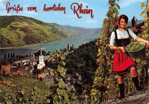 Gruesse vom herrlichen Rhein Panoramic view Woman with Grapes Fruits River