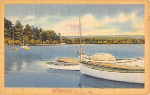 Newportville Pennsylvania Sailboat Harbor Waterfront Antique Postcard K77953