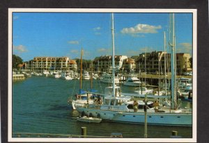 SC Shelter Cove Marina Palmetto Dunes Resort HILTON HEAD SOUTH CAROLINA Postcard