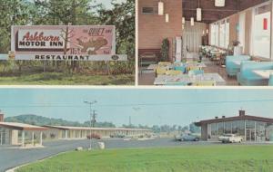 ASHBURN, Georgia, 1940-60s; Ashburn Motor Inn Restaurant Sign, Parking Lot, I...