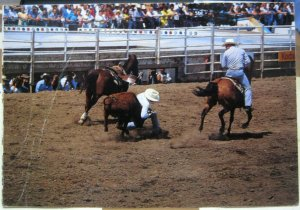 Canada Calgary Exhibtiion and Stampede - posted 1997