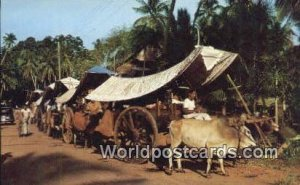 Bullock Carts, Malacca Singapore Unused