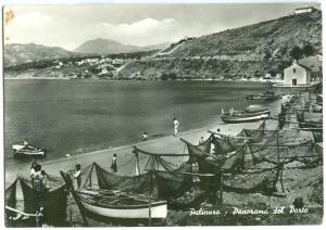 Italy, Palinuro, Panorama del Porto, used real photo Postcard