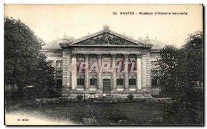 Old Postcard Nantes Museum Natural History