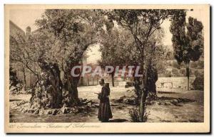 Old Postcard Jerusalem Garden Of Gethsemane