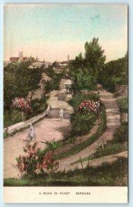 PAGET, BERMUDA  Handcolored Beautiful ROAD SCENE Albertype Postcard