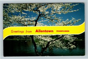 Allentown PA- Pennsylvania General Banner Greeting Cherry Blossom ChromePostcard