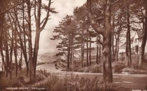 Torquay Marine Drive Vintage Unused Real Photo Postcard