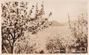 Peachland BC Canada Springtime Antique Real Photo Postcard