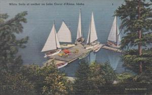 Idaho Coeur d'Alene White Sails At Anchor